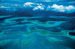 Neuika Coral Reef, New Caledonia, France