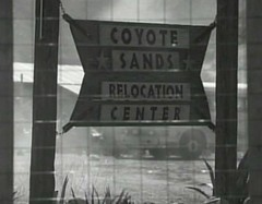 coyote sands2