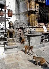 Swayambhunath, Katmandu, Nepal (balavenise) Tags: nepal shrine god buddha prayer religion buddhism monkeys katmandu swayambhunath prire devnagari  flickrgiants