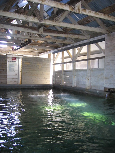 bath house with rafters