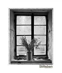 Stillleben (Frank Bremm [back for three months]) Tags: life stillleben still exf1