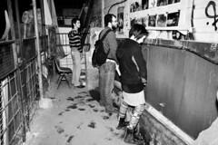 .. ( Bastiart  Paolo B-astia) Tags: bologna piss 2009 xm24 stravaganza pisciando satura100 orinatori
