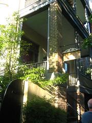 Savannah spring 09 024