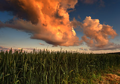 Nice Clouds Again... (Philipp Klinger Photography) Tags: trip travel blue light sunset red vacation sky orange cloud sun color colour green art nature field grass june yellow clouds germany landscape geotagged deutschland spring corn nikon colorful europa europe hessen wheat cereal may explore colourful hay philipp hesse badnauheim klinger summery d700 dcdead wisselsheim