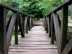Tabla a tabla, se hace el puente (CANENVAL) Tags: wood españa naturaleza tree nature puente spain paisaje paseo bosque árbol campo cantabria ucieda canenval