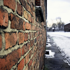 Frei (Sandra_R) Tags: winter snow brick wall erasmus poland auschwitz