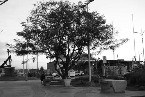 Spot : Plaza del Puerto de Antofagasta