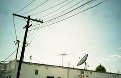 communicating (QsySue) Tags: powerlines wires 35mmfilm pointandshoot orangecounty huntingtonbeach olympusxa coupledrangefinder placesbehindplaces agfavistacolorfilm