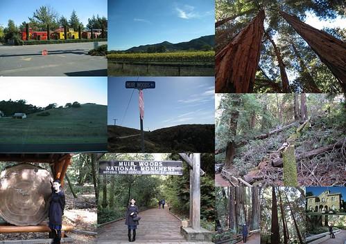 9 Nov 06 SF Muir Woods