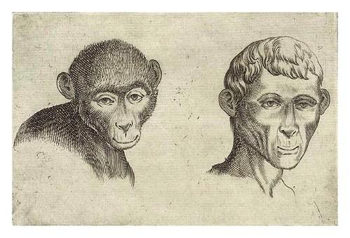 010-De humana physiognomonia- Giambattista della Porta 1586