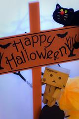 Happy Halloween! (Ali Tse) Tags: halloween toy toys amazon limited danbo tuenmun  revoltech jfigure  danboard  townmuntownplaza