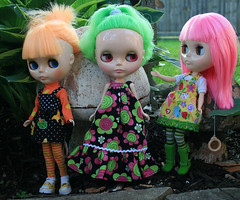 1 of 3 Zin askes: so what do you all want to do today? (gemini angel's art and dolls) Tags: swim swimmingpool mango maintenance amaryllis guava ewwwww yuk blythedoll summeriscoming handmadedress fromgina miema iamnotswimminginthat