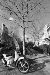 Moto in Paris (blackandy) Tags: bw paris france landscape iso200 f8    d90 nikond90 1400secs 20090201 20090201184916