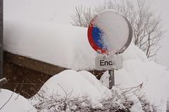 IMG_6531 (Daniel Pettinger) Tags: schnee winter snow storm ice canon snowfall eis eos350d sturm schneefall kirchschlag