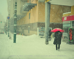 A Snowy Morning in Dotemachi Street. (Hirosaki Japan).  Glenn Waters.   2,000 visits to this photo.  Thank you. (Glenn Waters in Japan.) Tags: street winter cold japan umbrella 50mm nikon f14 sigma aomori  hirosaki       heavysnow      goldstaraward  glennwaters 107may7th