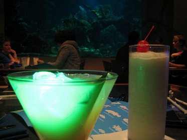 Drinks at Epcot's Coral Reef