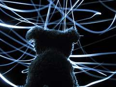 Day 47: Light Painting (-Snugg-) Tags: light portrait dog lightpainting color art home beautiful painting puppy snuggle march stuffed fuzzy photograph stuffedanimal 365 pup boppy kiki brightly flickrsbest snugg 365toyproject snugglepup