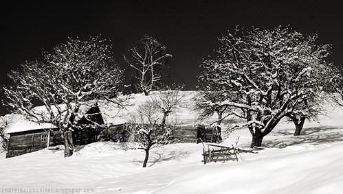 despre alb ca zapada (IX)