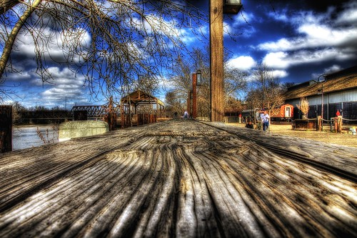 Long Wood 365-67