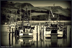 Careys Bay (_setev) Tags: newzealand seaside village harbour stephen otago dunedin murphy setev stephenmurphy