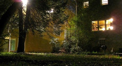Backyard at night by Dave 'Coconuts' Kleinschmidt