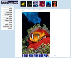Nikon D700 underwater / dive photos by Alexander Mustard