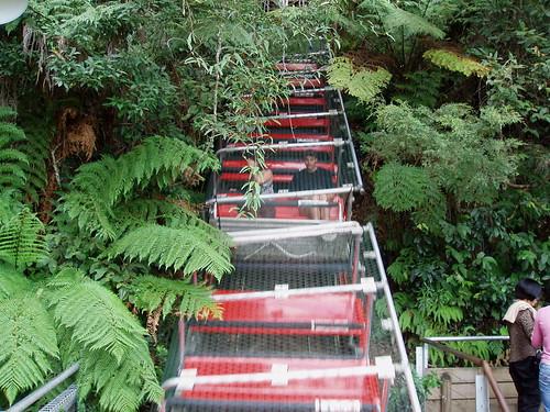 Scenic World. Katoomba. Blue Mountains. NSW