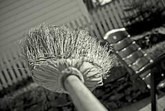 witch handle (Tommy Kristian Gabrielsen) Tags: bw norway handle norge bokeh witch norwegen brush rod birch broom kost hage lillesand svart hvitt sprigs svarthvitt austagder birching agder børste bjørkeris kosteskaft sopelime feiekost