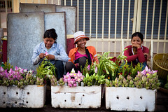 LOTUS FLOWERS (Roy Del Vecchio) Tags: flowers smile asia cambodia lotus siem reap siemreap selling