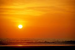 Ballena seria (victor mendivil) Tags: sunset sea orange costa sun sol beach peru atardecer coast mar nikon lima playa shore nikkor naranja ocaso mala orilla caete cruzadas d80 bujama 18135mmf3556g ltytr1 goldstaraward cruzadasgold 6retos6 victormendivil