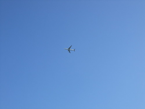 Richmond Park - under the flightpath