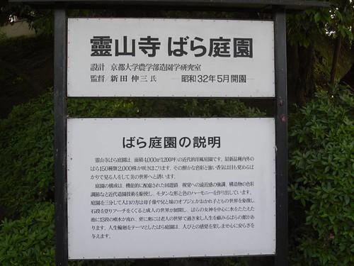 霊山寺「バラ庭園」@奈良市-01