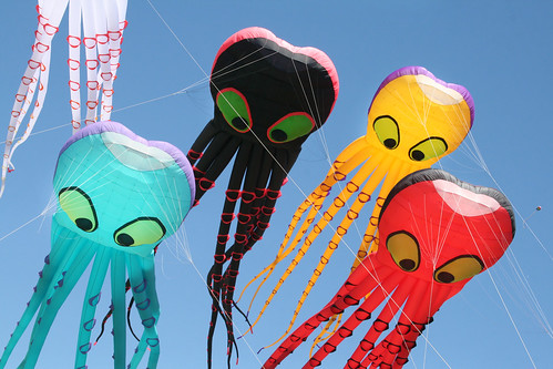 Octopus Kites