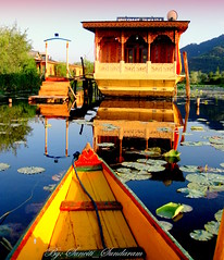 YOUR Touch Will Rock The Boat and Shake The Shadows....So  Don't..... (Sunciti _ Sundaram's Images + Messages) Tags: house lake holiday reflection green art nature water boat flora barca lily lotus fiume resort fowl kashmir 1001nights visualart brightspark colr blueribbonwinner ninfee kaledioscope 10faves 5photosaday founa abigfave anawesomeshot colorphotoaward impressedbeauty aplusphoto agradephoto flickraward flickerdiamond inspirationhappiness brillianteyejewel concordians brilliantphotography thebestofday gnneniyisi rubyphotographer mallimixstaraward artofimages flickrmasterpieces capturethefinest winklerians 1001nightsa