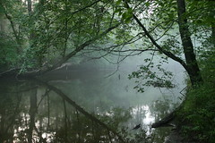 IMG_9966 (Dan Correia) Tags: 15fav reflection fog wow river amherst canonef1740mmf4lusm