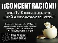 ConcentracionMartes18