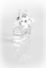 Daisy (PhotosbyDi) Tags: stilllife nikon perfume daisy highkey whiteonwhite d600 daisyperfume nikonf282470mmlens daisyonwhite