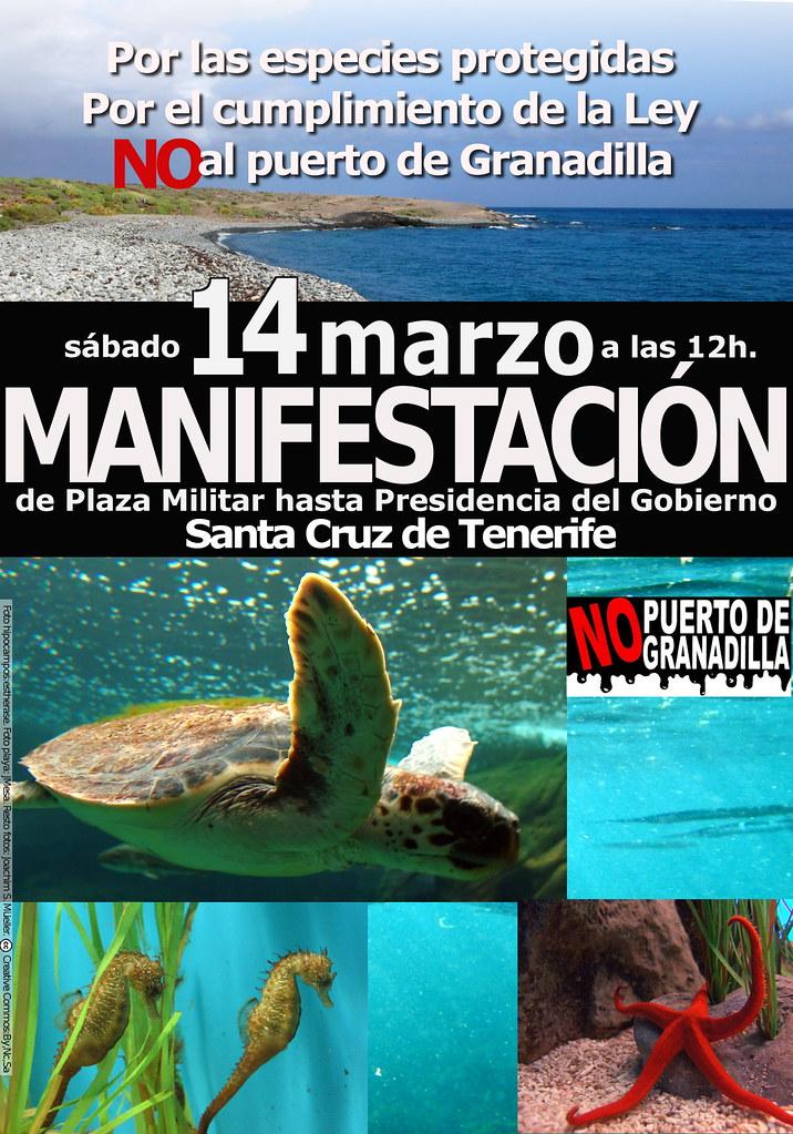 Cartel Manifestación 14 marzo. color