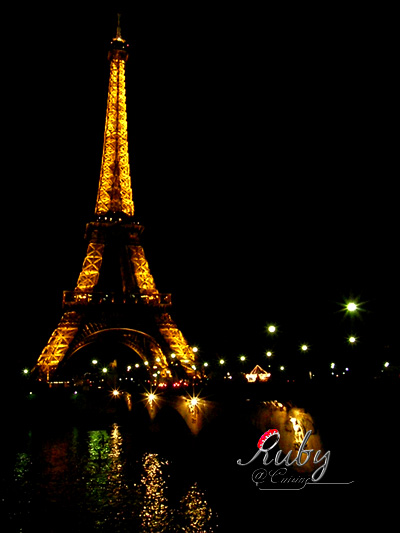 Eiffel tower_05_night view