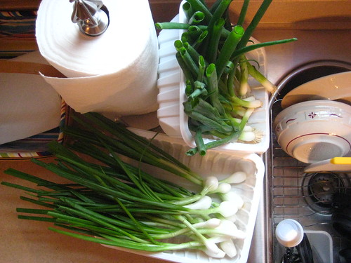 green onions, sinkside.
