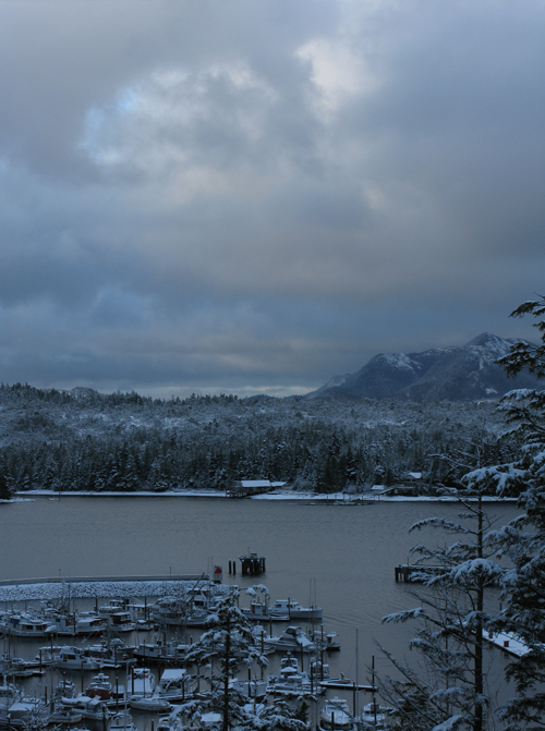 Thomas Basin with new snow, Ketchikan, Alaska
