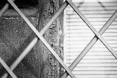 cross-ing (cosmonautix) Tags: street city urban blackandwhite bw film 35mm poland polska krakow hp5 ilfordhp5plus400 cracow ilford bnw olympusom1 malopolska fyp krakoff classicbw плівка аналог