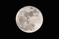 [フリー画像] [自然風景] [空の風景] [月の風景] [夜空の風景] [夜景] [満月]     [フリー素材]