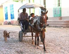 Family transportation, Trinidad Cuba (**El-Len**) Tags: travel horse dog man child cuba streetscene cobblestone transportation