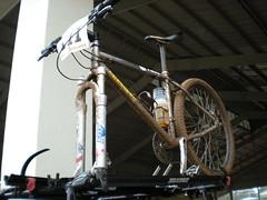 7-Bike After