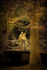 Wedding / Bruiloft (siebe ) Tags: bridge wedding holland texture love dutch groom bride nederland thenetherlands brug bridal mariage huwelijk trouwen bruiloft bruid bruidegom trouwfoto elswout bruidsreportage trouwreportage huwelijksreportage bruidsfoto bridalsiebe wwwmooietrouwreportagesnl