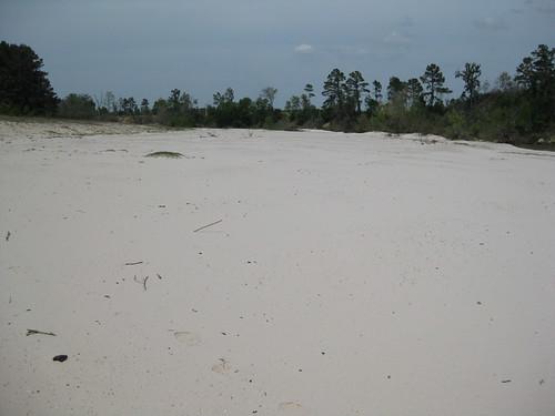 sandbar1.jpg