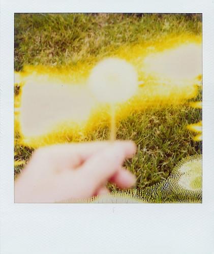 like a sparkler