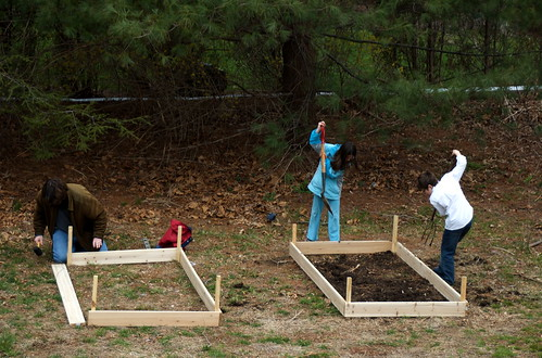 Raised beds in the making.