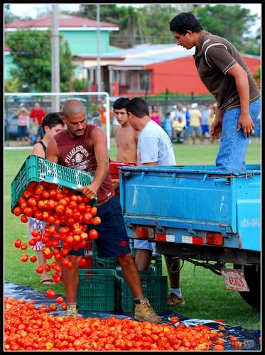 Guerra de tomates, primer asalto